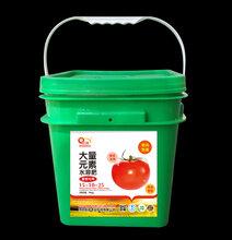 武威西红柿膨大肥料,冲施肥,茄子肥厂