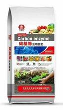 唐海县高产生物有机肥生产基地图片