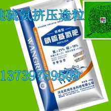 通海县挤压颗粒氮追肥制作图片