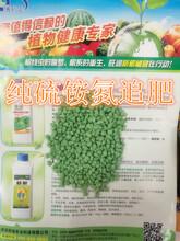 咖啡粒氮追肥团购价旺润水溶氮钾追肥生产图片
