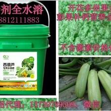 供应水溶肥执行标准旺润冲施肥高钾肥生产图片