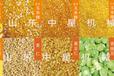 供应内蒙古赤峰小型家用自动磨玉米碴子机玉米大碴加工设备