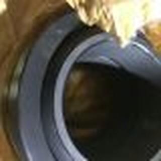 菏泽代理商NTN优质原装食品机械轴承1212图片3