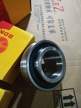 供应BDK不锈钢外球面轴承UCC212、UCC213