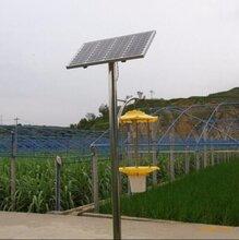 黑龙江鸡东县太阳能杀虫灯厂家