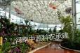 河南温室工程供应薄膜温室PC板温室玻璃温室智能温室