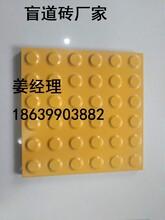 广东清远盲道砖厂家,清远盲道砖质量a图片