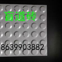 青海玉树盲道砖厂家,玉树盲道砖质量a图片