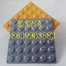 廣東珠海陶瓷盲道磚,廣東全瓷盲道磚d圖片