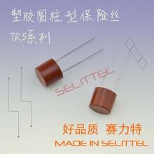 TR5系列保险丝382圆柱形保险丝胶壳保险丝电源保险丝图片