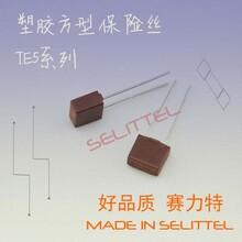 供应TE5保险丝392方形保险丝胶壳保险丝电源保险丝图片