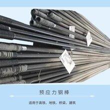 西安预应力钢棒厂家-专业生产图片