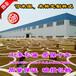 100斤-2000斤土陶大酒缸陶瓷发酵缸酒罐厂家直销量大价优