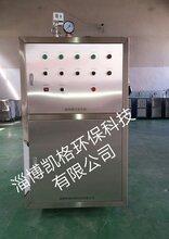 供应烟台莱州0.2T电蒸汽锅炉电蒸汽发生器