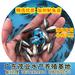 淡水鲈鱼苗养殖场直接提供优质抗病力强加州鲈鱼苗中山大口黑鲈苗正在热销中