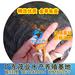 俄罗斯金丝鲩鱼1-8cm寸苗种苗批发价福建金草鱼苗养殖技术茂业水产免费在线咨询