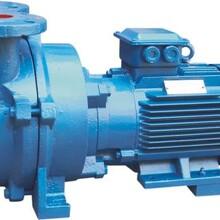 供应东莞真空泵2BV-5110水环真空泵图片