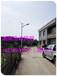 湖南衡阳太阳能路灯厂家太阳能路灯价格表