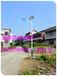 武汉小区照明灯太阳能路灯庭院灯小区照明找浩峰照明