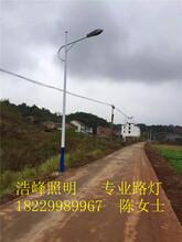 湖南益阳太阳能路灯厂家益阳新农村路灯直销