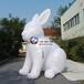 玉兔气模吹气小白兔发光月亮中秋节打气月饼气模月兔气模定制