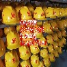 顺义安全帽价格/安全帽销售/安全帽多少钱