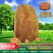 惠州招牌刻字石村牌地标石惠州大型广场园林黄蜡石校园文化景观石