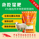 育肥羊怎么喂长得快羊育肥饲料
