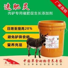 肉驴催肥饲料添加剂促进肉驴生长添加剂
