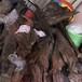 国内哪里有收购乌木阴沉木的商家?价格多少钱一吨?