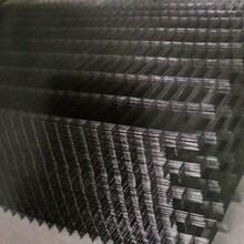 福建黑丝网片宏联专业生产镀锌铁丝网片