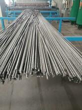 黑丝网片宏联专业生产镀锌铁丝网片批发厂家