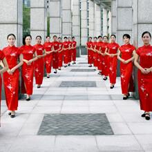 鹤壁明康礼仪模特演出公司承接:鹤壁礼仪演出、鹤壁模特演出、鹤壁各种演员演出