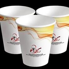 会昌县纸杯工厂、一次性纸杯批发、广告纸杯定制3-5天出货、广告纸杯免费设计图片