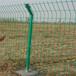 护栏网分类养鸡护栏网绿色防护网双边丝护栏网公路铁路护栏网