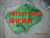 云南西双版纳植生袋草种生态袋边坡修复护坡施工工艺专用资材哪里有卖?1元一个