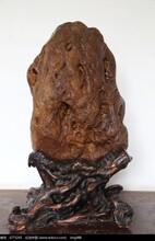 黄河奇石现在稳步升值图片