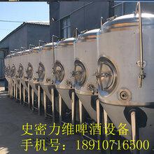 福建小型啤酒设备小型啤酒设备厂家/价格/配置/图片