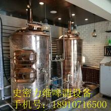 河北精酿啤酒设备厂家,自酿啤酒设备多少钱,自酿啤酒屋