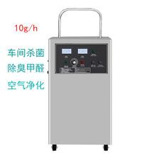臭氧发生器10g食品厂车间空气净化杀菌消毒机