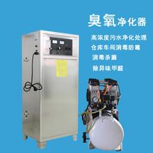100g氧气源臭氧机发生器高浓度水处理工业消毒车间除臭杀菌活氧机