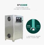 氧气源20g臭氧机发生器高浓水处理臭氧杀菌消毒多功能活氧机