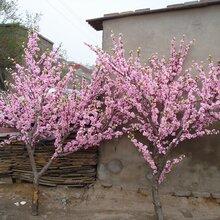 山西供应厂家仿真花艺设计仿真大型桃花树植物墙酒店会场布置假树