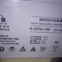 双登蓄电池GFM-100代理