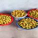 供应云南昭通油杏杏树苗5公分珍珠油杏杏树苗价格