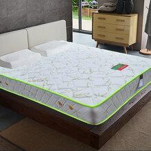 喜玫瑰家居香竹御炭棉床垫-----爱家日记系列图片