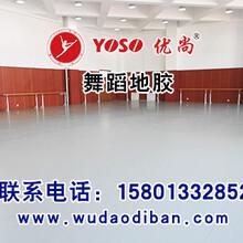 专业舞蹈地胶的特点舞蹈地板的价格拉丁舞用的运动地板图片