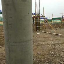 河間圓柱模板滄州圓模板河北木制圓模板廠家直銷質量保障貨到付款圖片