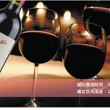 四川红酒批发供应批发澳洲奔707红酒PenfoldsBin707