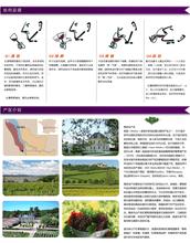 红酒批发供应批发拉菲传说梅多克法定产区红葡萄酒